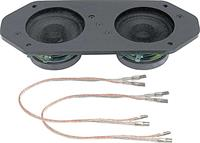 60 Watt Dual Center Dash Speaker